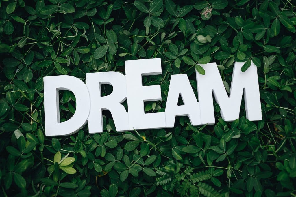 Live in the dream